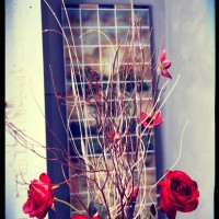 Pannello e rose
