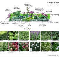 giardino-3